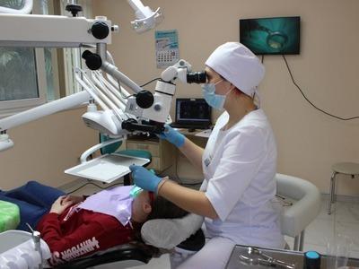 Ткани зубов под микроскопом
